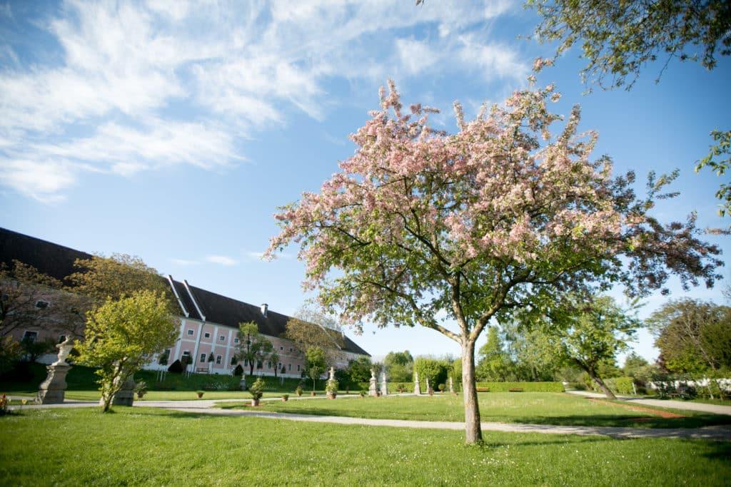 Blick auf den historischen Hofgarten