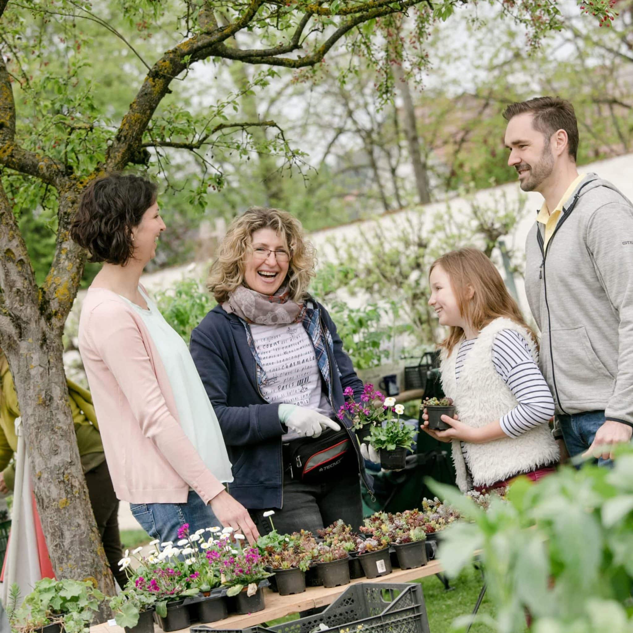 Verkauf von Blumen beim Pflanzenmarkt im Stift Seitenstetten