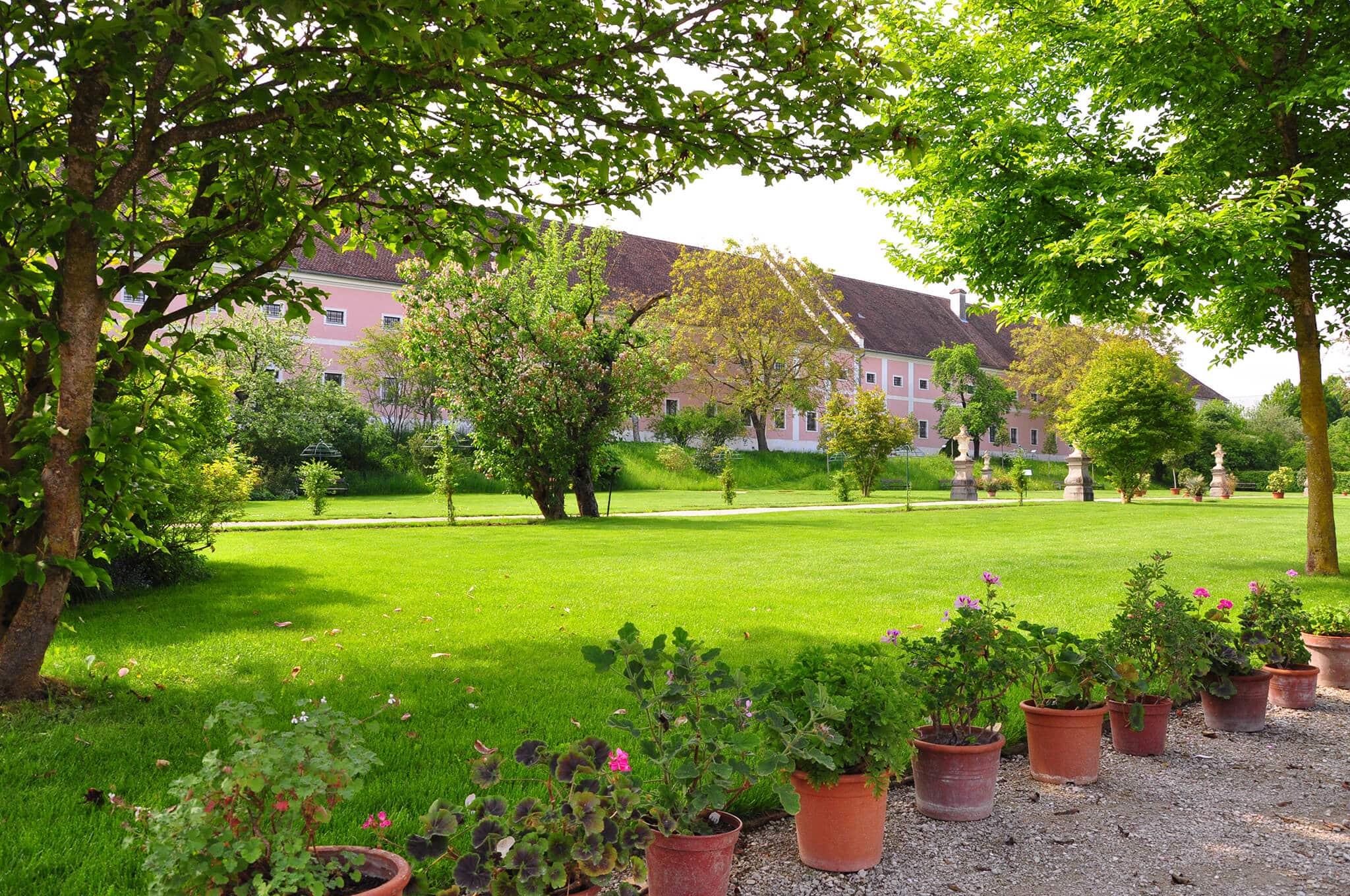 Magnolienwiese im Rosengarten