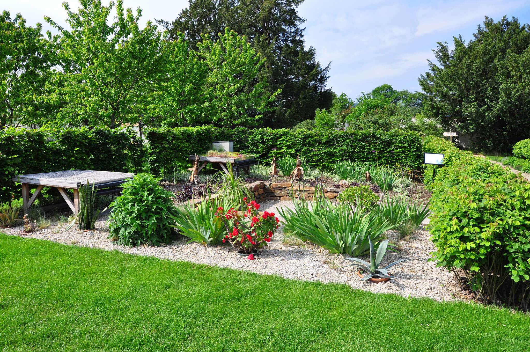 Themengarten im Rosengarten