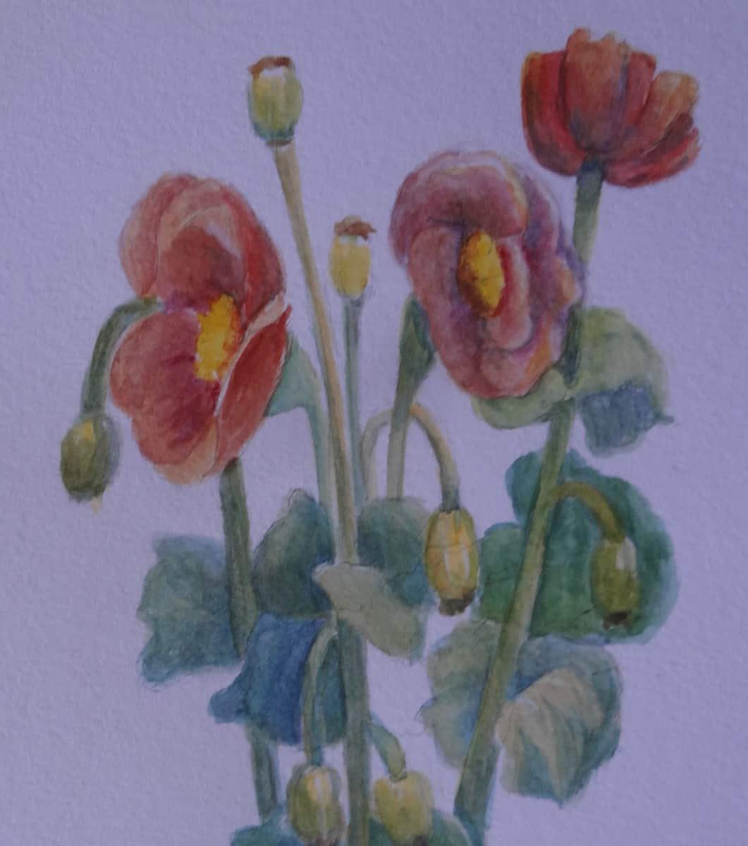 Bild von Blumen in der Ausstellung in der Galerie des Stifts Seitenstetten
